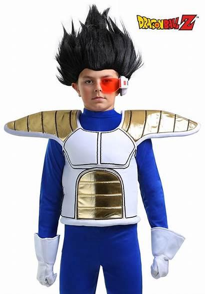 Saiyan Dragon Armor Ball Child Accessory