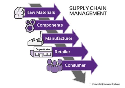 supply chain processes    starting  company