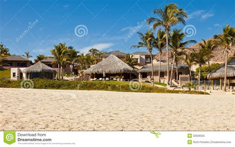 Tiki Huts Unlimited by Cabo San Lucas Mexico Stock Image Image Of Palm Sand