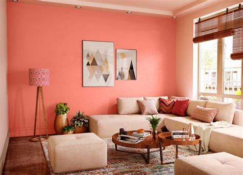 coral island house paint colour shades  walls