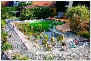 Schwimmteich Im Garten : einen schwimmteich im garten badeteich bauen ~ Sanjose-hotels-ca.com Haus und Dekorationen