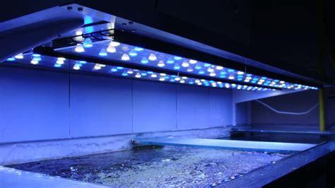 eclairage led aquarium images