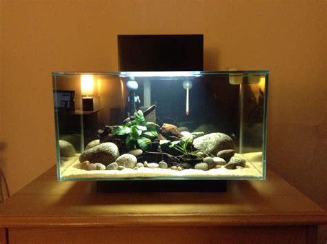 Fluval Edge 6 Gallon Aquarium  Fluval Edge Pinterest