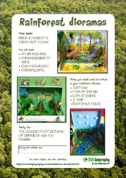 make a rainforest diorama project for school rainforests