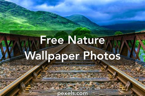 nature wallpapers 183 pexels 183 free stock photos