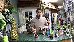 Amaryllis In Wachs : 5 minute florals waxed amaryllis bulbs youtube ~ Lizthompson.info Haus und Dekorationen