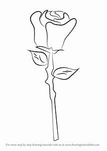Learn How to Draw a Rose Easy (Rose) Step by Step ...