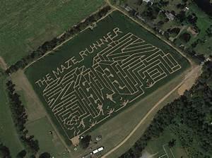 Maze Runner corn maze at Horse Sleigh Farms in NJ! | Maze ...