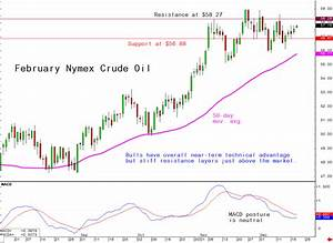 Daily Technical Spotlight February Nymex Crude Oil