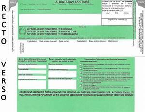 Numero Pacifica Assurance : carte verte voiture assurance pont celles carte verte assurance infomotor carte verte d 39 ~ Medecine-chirurgie-esthetiques.com Avis de Voitures