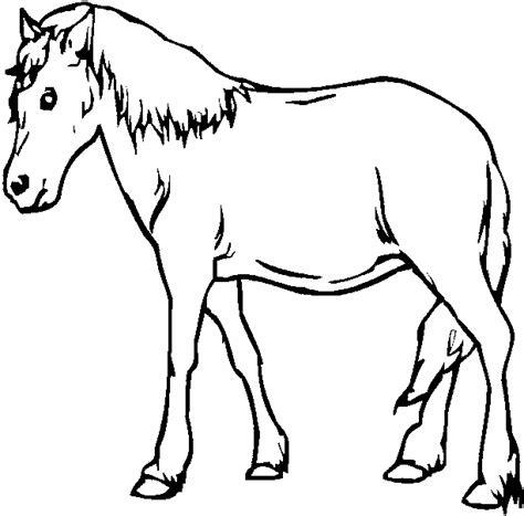 Coloring Kuda by Gambar Mewarnai Kuda Gambar Mewarnai Lucu