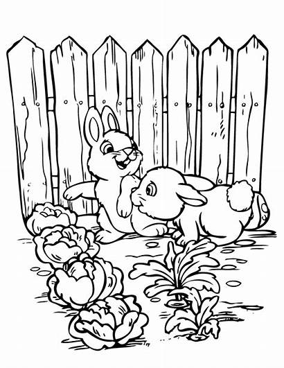 Coloring Garden Pages Printable Gardening Vegetable Rabbits