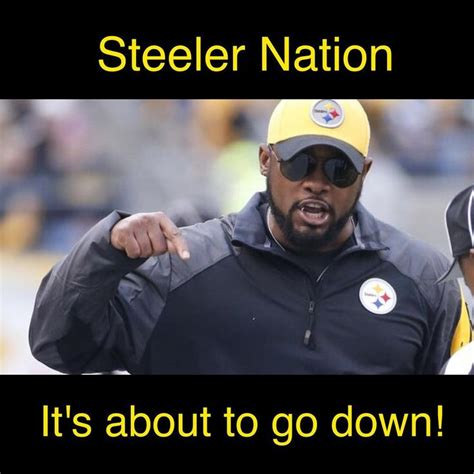 Mike Tomlin Memes - the 25 best steelers images ideas on pinterest steelers football pittsburgh steelers