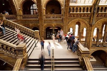 Museum Gifs History Natural London Happening