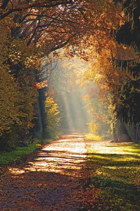 É a a beleza da vida que me faz viver... É o amor que me ...