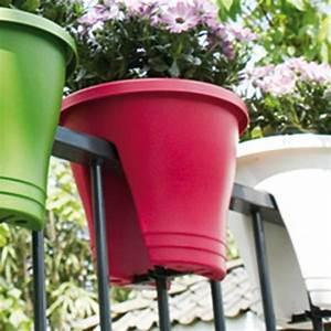pot balcon pas cher With marvelous idee de plantation pour jardin 4 cultiver la vigne en pot