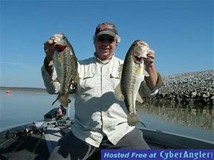 Cooler Size Chart Alabama 39 S Weiss Lake This Fall Season For Big Bass
