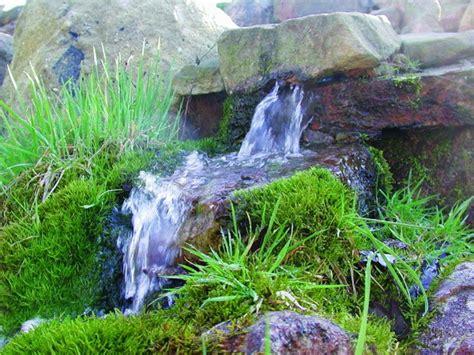Quelle, Bach, Bachlauf Im Naturagart  Park Landschaft