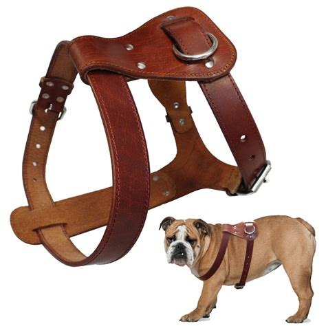 thick  genuine leather pet dog harness  pitbull