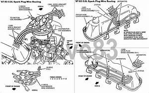 Spark Plug Wiring Diagram For 1995 E