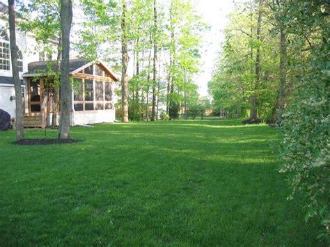 Big Backyard Landscaping Ideas - big open shady backyard my home