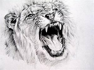 Lion roar by KingVahagn on DeviantArt