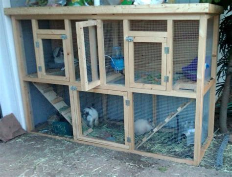Rabbit Hutch Plans For Meat Rabbits
