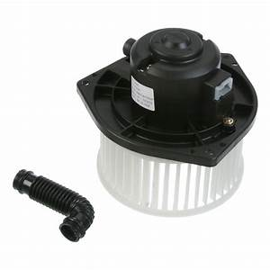 Tyc Blower Motor  With Fan Cage - Walmart Com