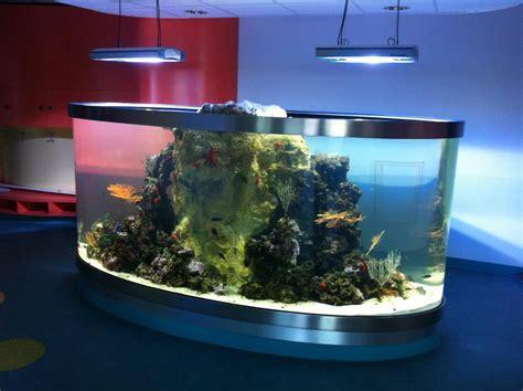 aquarium g 233 ant sur mesure sur tropez aix en