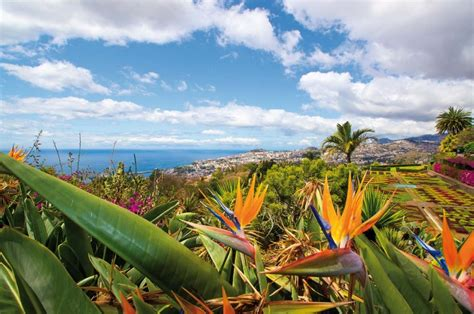 Botanischer Garten Funchal by Botanischer Garten Funchal