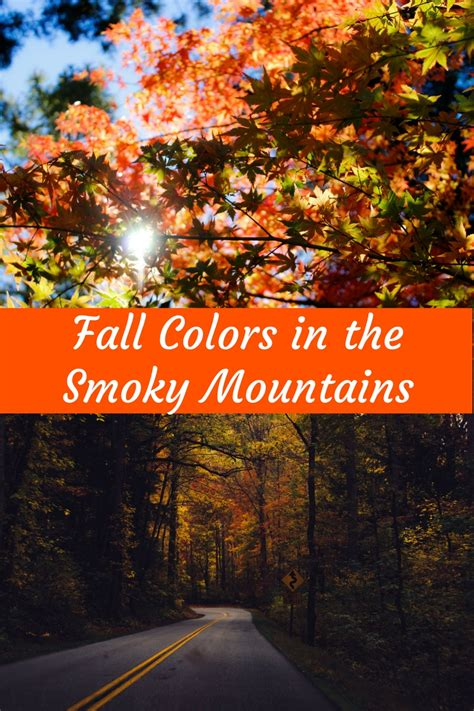 smoky mountain fall colors best time to see fall colors in the smoky mountains