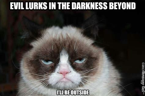 Tard The Grumpy Cat Meme - pin by susan k on tard the grumpy cat pinterest