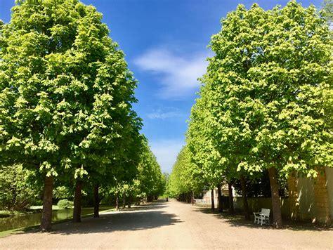 Garten Landschaftsbau Essen Werden by Impressionen Will Garten Und Landschaftsbau In Essen