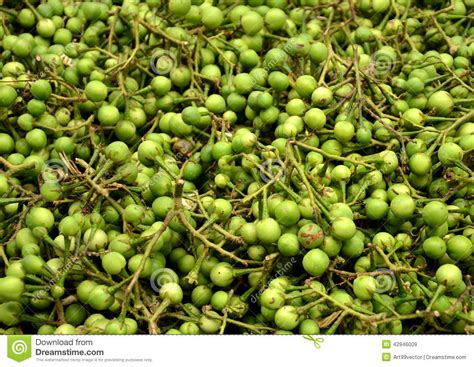 tiny vegetables vegetables a small stock photo image 42946009