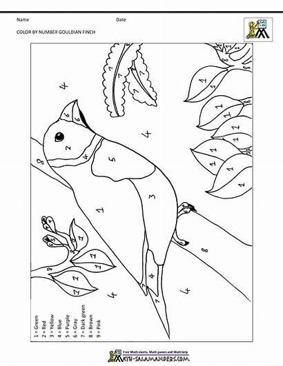 Worksheets Kindergarten Coloring Bird Math Number Sheets