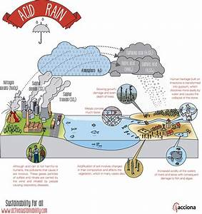 What Is Acid Rain And How Is It Formed