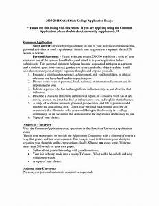 Thesis Statement Persuasive Essay College Application Essay Topic Ideas Synthesis Essay Ideas also English Essay Story Essay College Application Techniques In Essay Writing College  English Literature Essay Questions