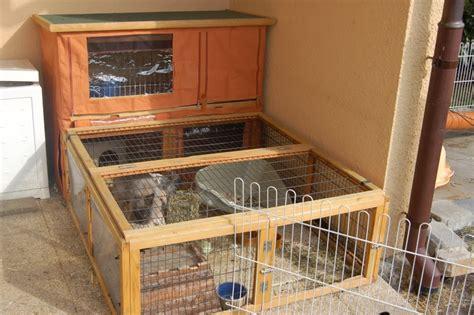 comment am 233 nager les lapins dehors pour l hiver