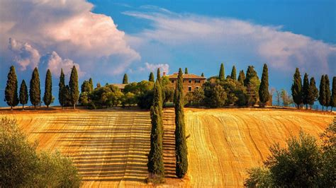 province  siena toscana italy phone wallpapers