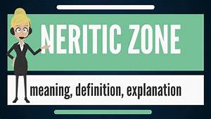 What Is Neritic Zone  What Does Neritic Zone Mean  Neritic