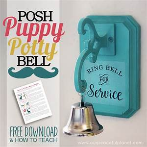 how to potty train a dog to use a bell how to make one