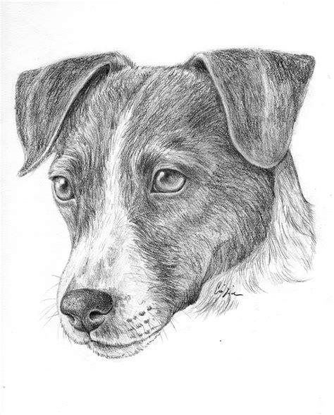 disegni cantanti famosi matita disegni a matita di animali facili da copiare