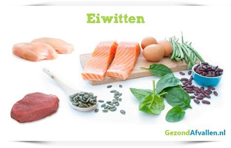 eiwitten in eten