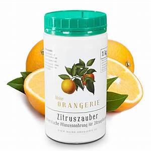 Dünger Für Zitronenbaum : 1 kg citrus d nger f r zitronenbaum verzichten sie auf ~ Watch28wear.com Haus und Dekorationen