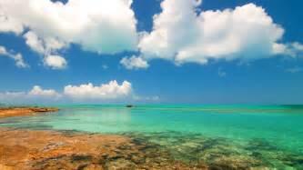 cat island bahamas bahamas mayhew photography