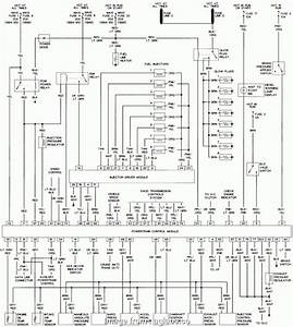 99 F350 Trailer Brake Wiring Diagram Professional 1999 F