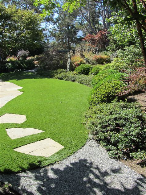 lawn and garden care for autumn and winter lawns in southern california