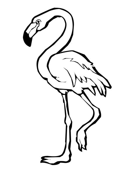 flamingo coloring page flamingo coloring pages to and print for free
