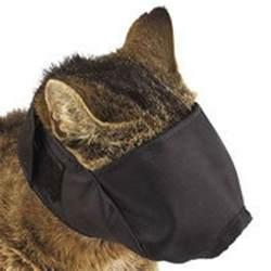 cat muzzle cat muzzle ebay