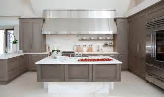 kitchen ideas grey gray in the kitchen home design and decorating ideas